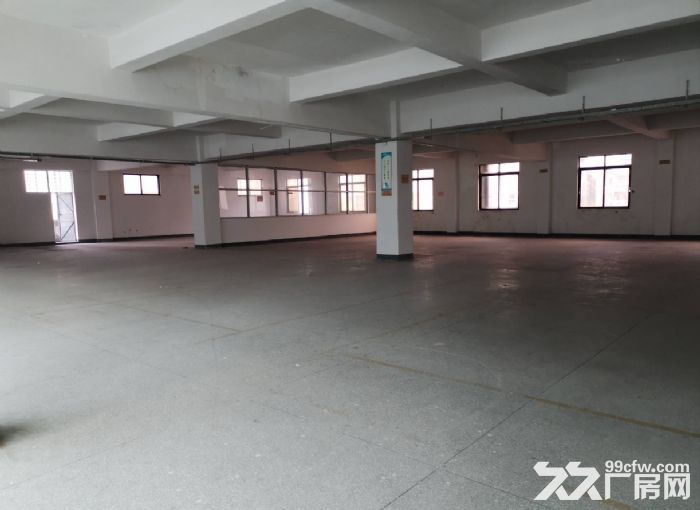 横栏益辉二路二楼单层面积1000平米厂房仓库招租可分租-图(2)