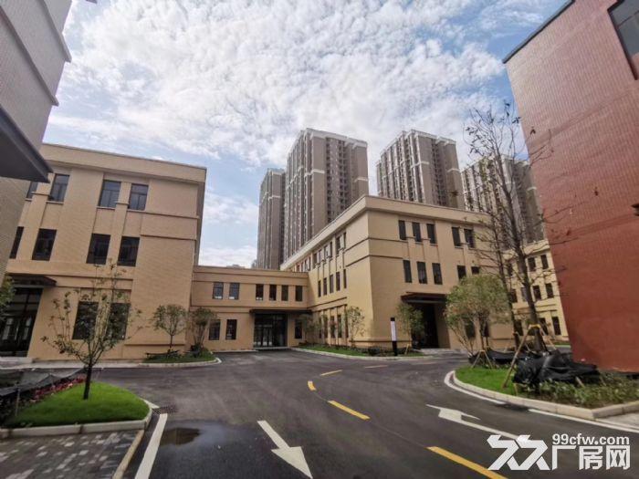 两江新区独栋标准厂房独立产权可按揭2500平-图(4)