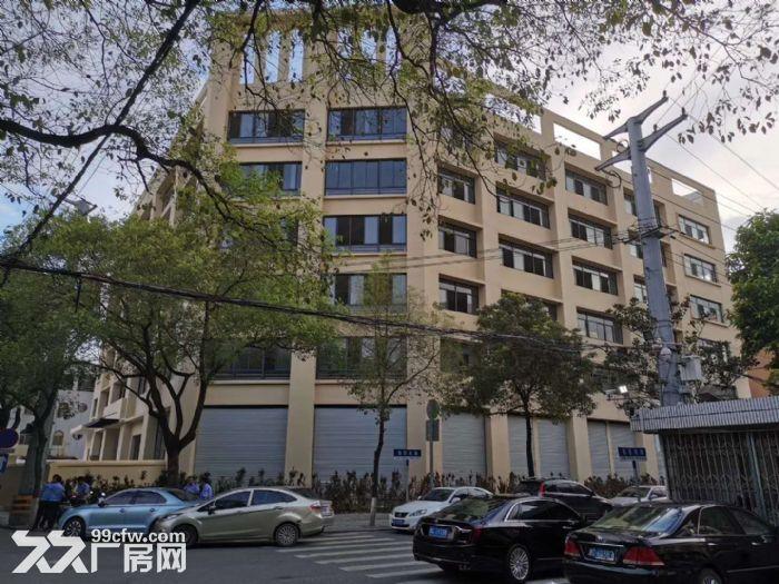 邻里中心9621方办公楼可分租厅大高调一楼沿街店面-图(2)