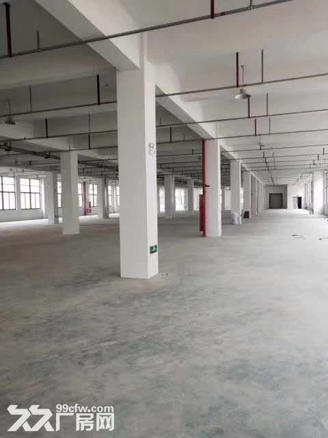 邻里中心9621方办公楼可分租厅大高调一楼沿街店面-图(5)