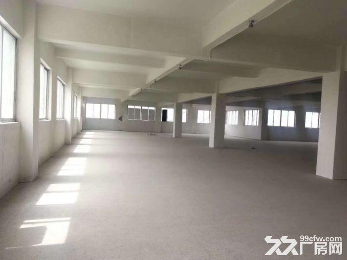 邻里中心9621方办公楼可分租厅大高调一楼沿街店面-图(7)