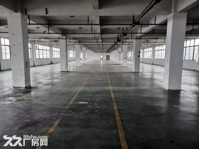 文昌路12000方,沿街厂房,形象好,宜总部经济、电商大楼等-图(2)