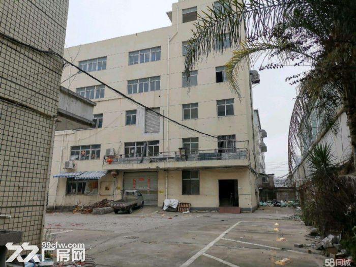 文昌路8400方两栋一楼店面位置好宜各行业需要-图(1)