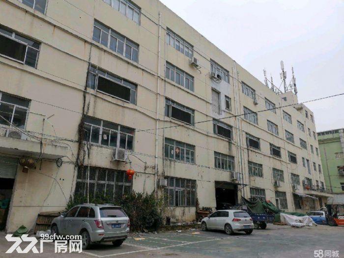 文昌路8400方两栋一楼店面位置好宜各行业需要-图(2)