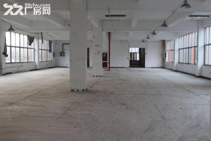 文昌路8400方两栋一楼店面位置好宜各行业需要-图(6)