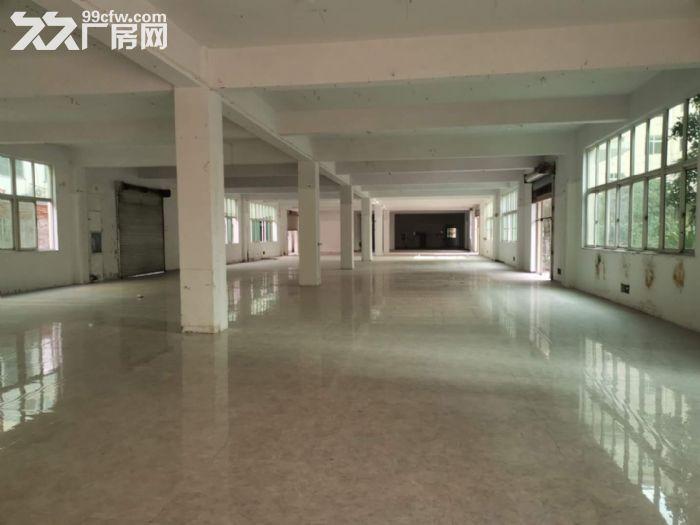 富春江路一楼1300方高5米宜仓库汽修-图(2)
