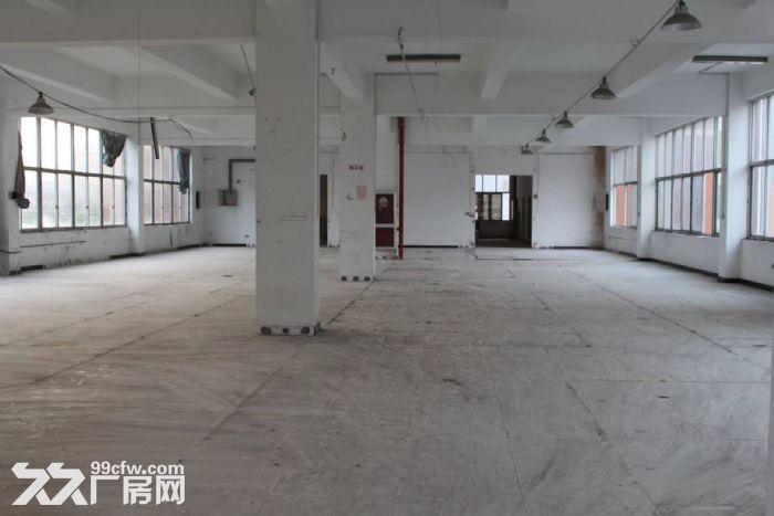 邻里中心2500方独院有电梯停车方便宜仓库办公电商-图(4)
