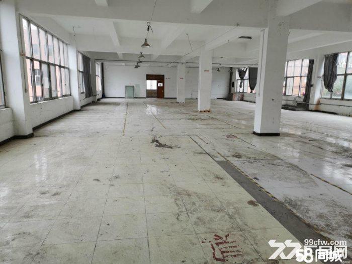 邻里中心2500方独院有电梯停车方便宜仓库办公电商-图(5)