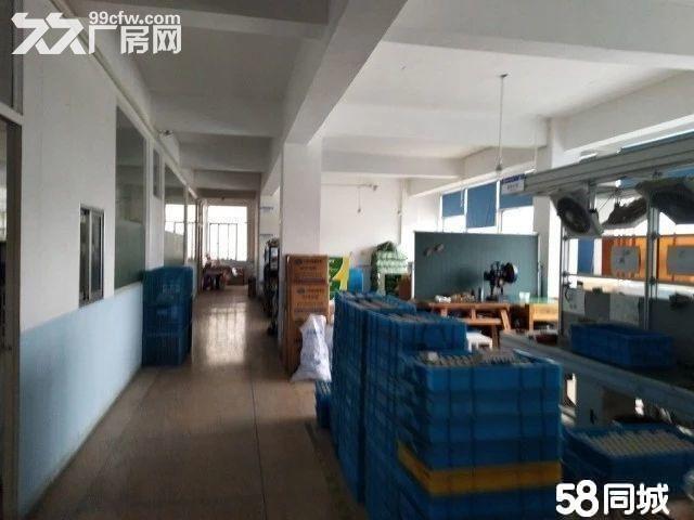 邻里中心2500方独院有电梯停车方便宜仓库办公电商-图(6)