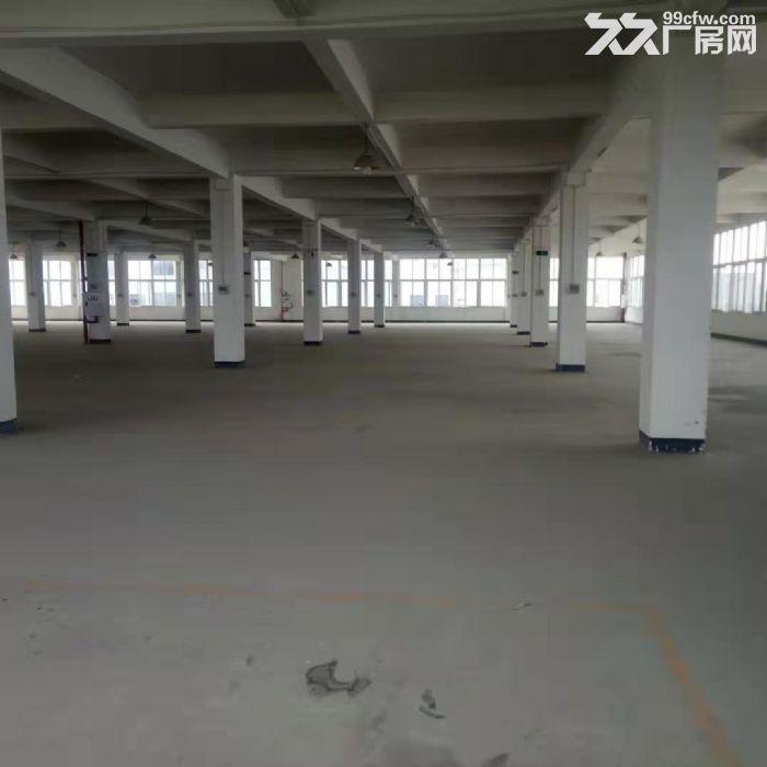 茶园新区2300平米厂房出租-图(1)