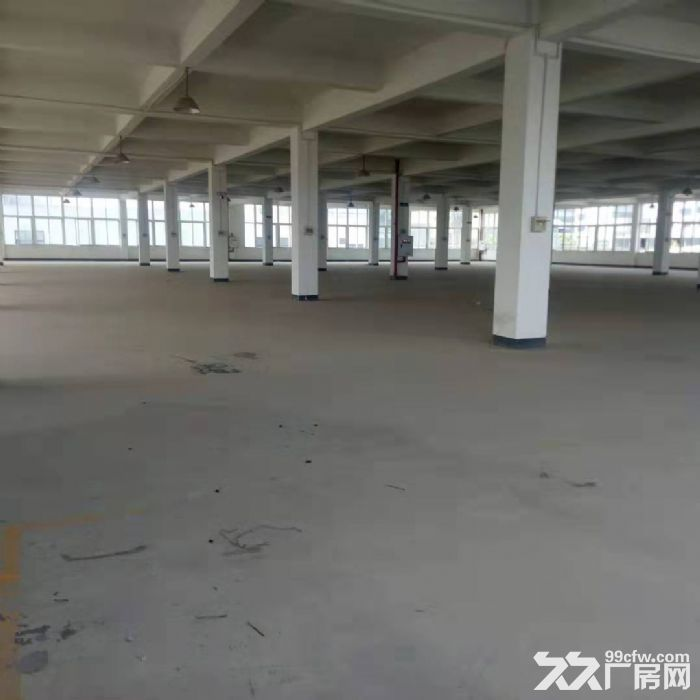 茶园新区2300平米厂房出租-图(2)
