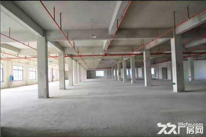 火车东站旁标准厂房出租,有一楼,交通便利-图(1)