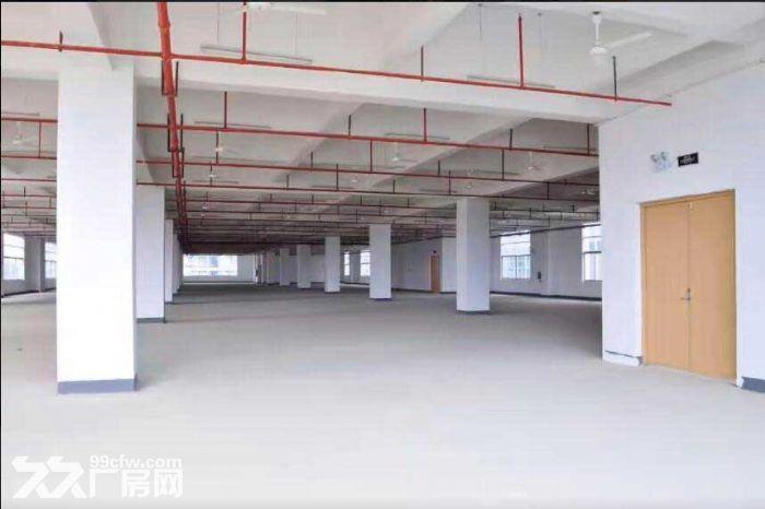 火车东站旁标准厂房出租,有一楼,交通便利-图(2)
