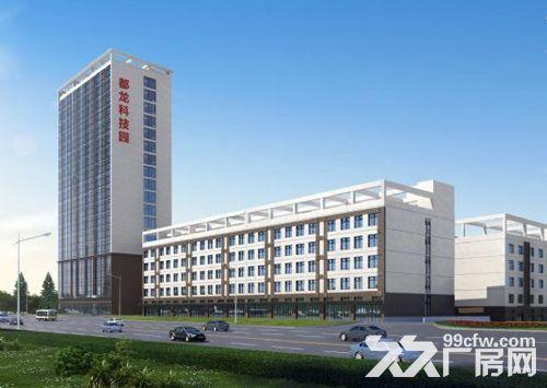 高新区标准厂房大小面积都有_6米层高_有一楼,都龙科技园-图(2)
