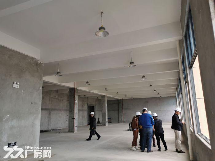 高新区标准厂房大小面积都有_6米层高_有一楼,都龙科技园-图(3)
