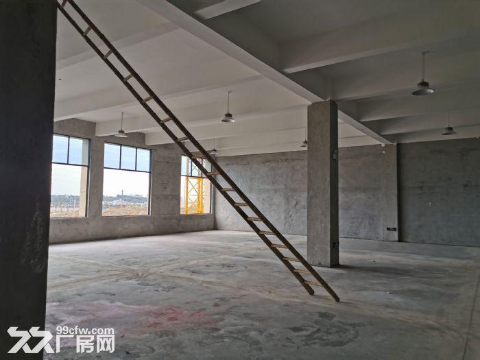 高新区标准厂房大小面积都有_6米层高_有一楼,都龙科技园-图(5)