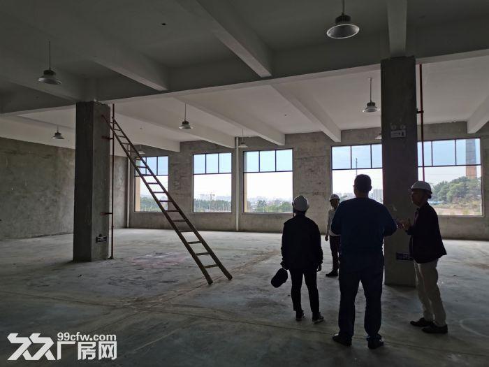 高新区标准厂房大小面积都有_6米层高_有一楼,都龙科技园-图(6)