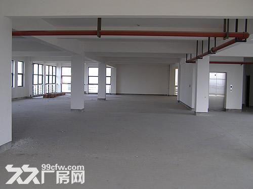 新厂房出租(第三层6000平方米)-图(1)