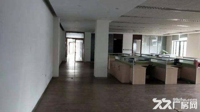 吴江开发区独门独院多层19000平米,层高8米-图(3)