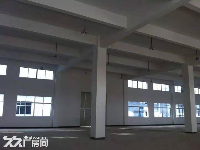 吴江开发区独门独院多层19000平米,层高8米-图(5)