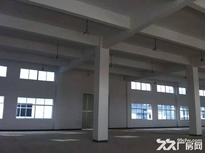 吴江开发区独门独院多层19000平米,层高8米-图(6)