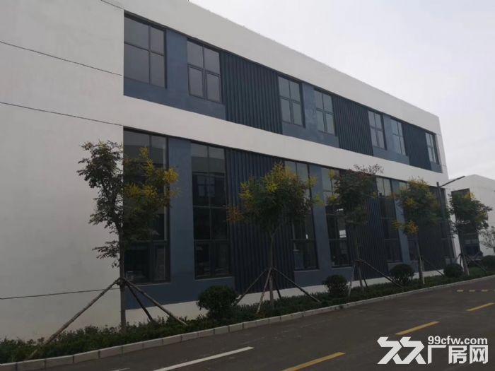 【中南高科新经济产业园】800−5000m²50年产权工业园区-图(2)