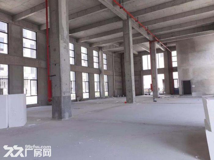 出售首层8.1M三层到五层标准厂房面积多选-图(1)