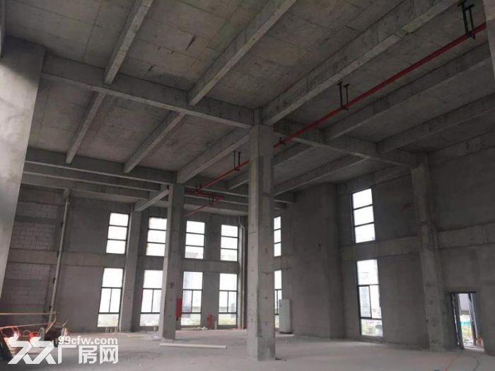 出售首层8.1M三层到五层标准厂房面积多选-图(3)