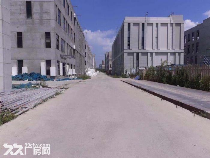 出售首层8.1M三层到五层标准厂房面积多选-图(2)