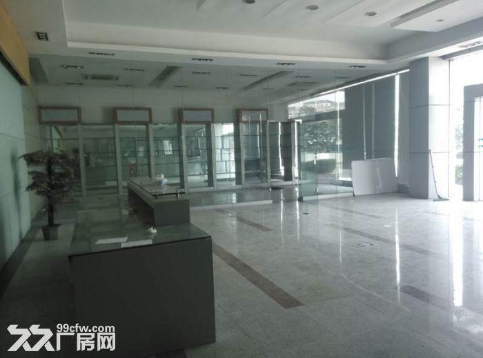 三水区乐平镇新出原房东独院单一层8000平米出租-图(3)
