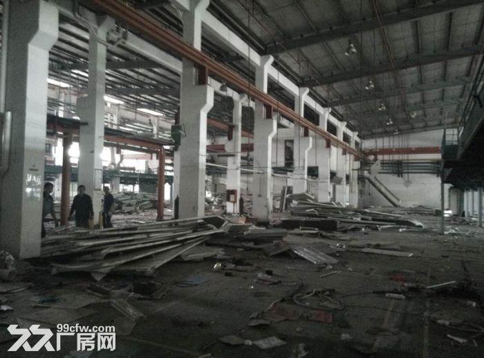 三水区乐平镇新出原房东独院单一层8000平米出租-图(5)