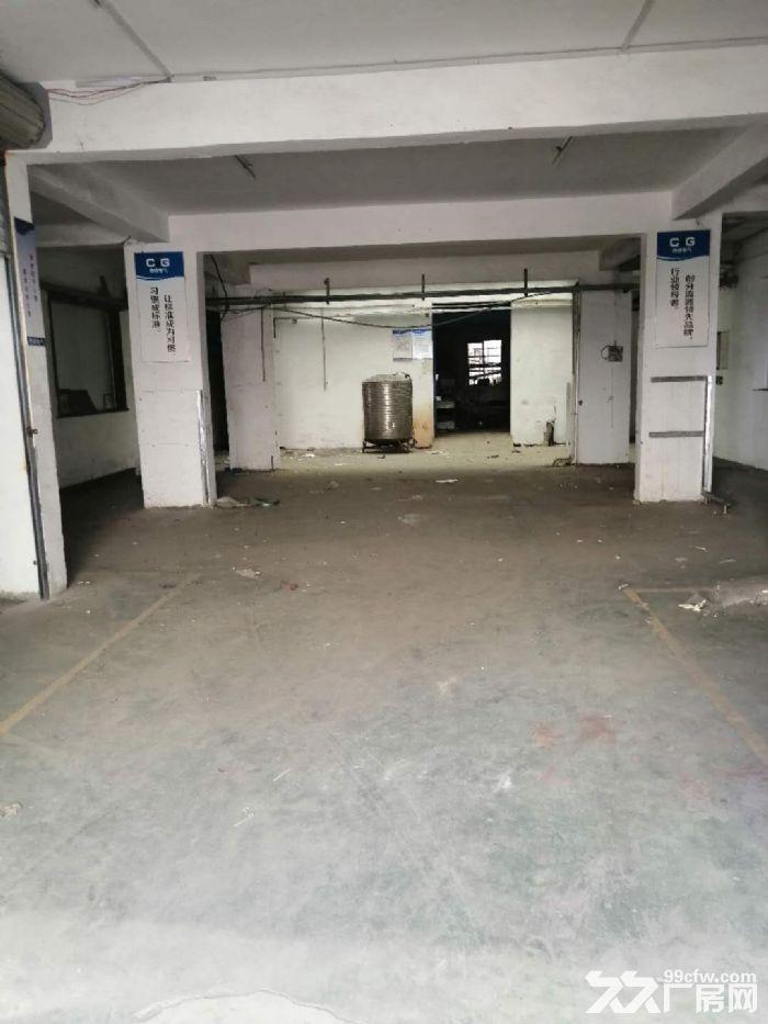 白石街道一楼厂房出租600平-图(1)
