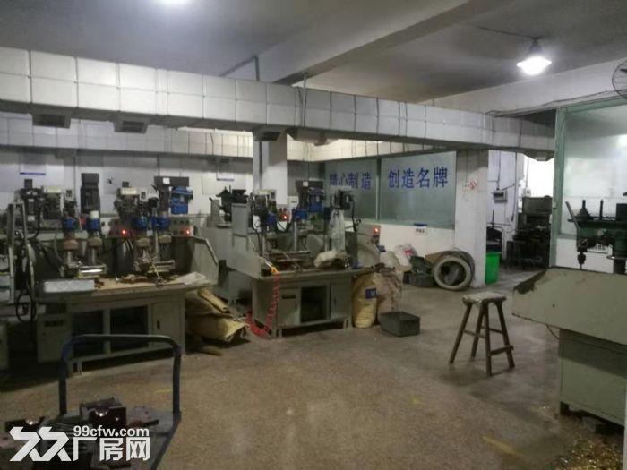 白石街道一楼厂房出租600平-图(3)