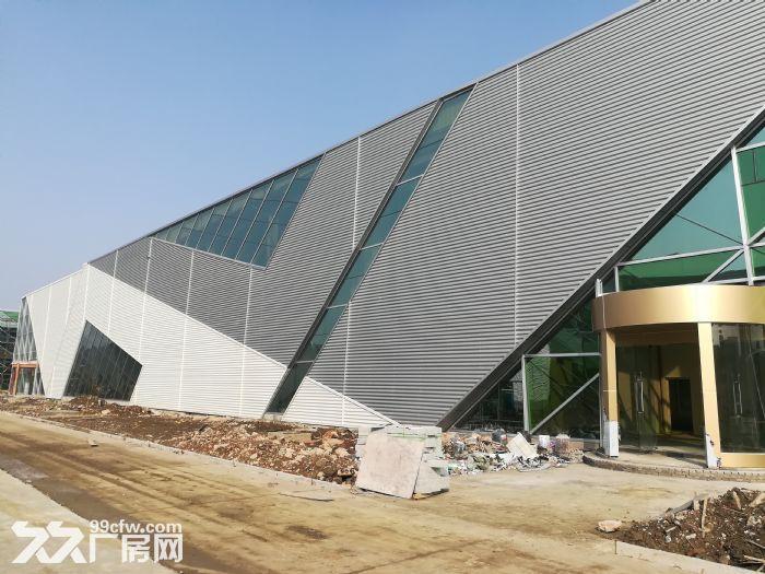 新区纯一楼30000平出租(可以分租)-图(1)