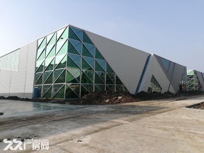 新区纯一楼30000平出租(可以分租)-图(4)