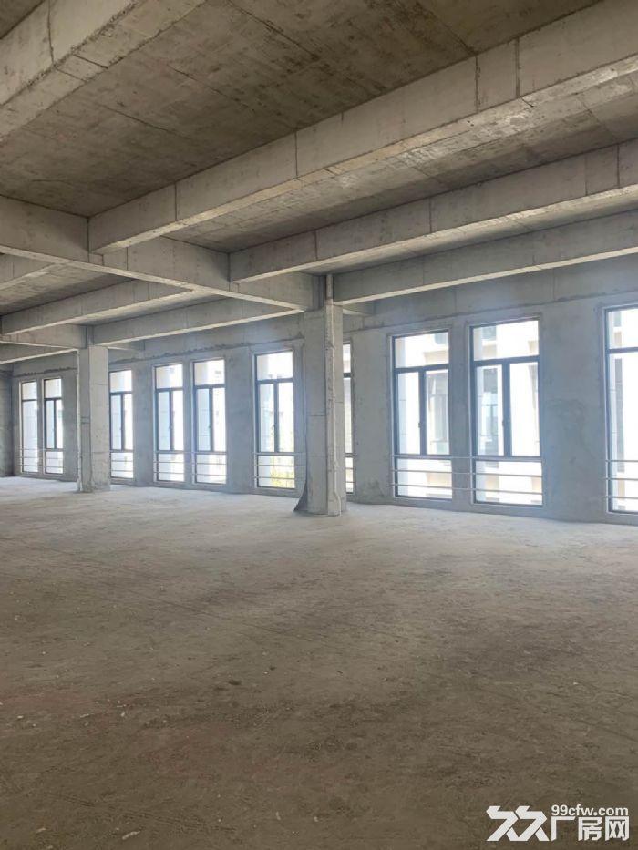 全新厂房花园式生产研发办公,开发商直租700平配套齐全价格优-图(1)