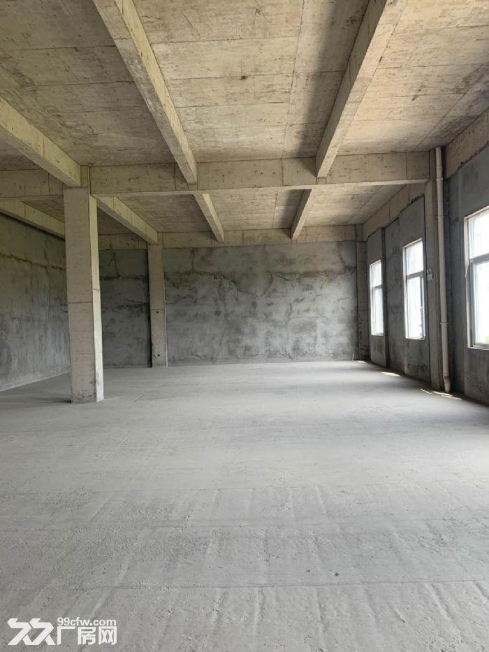 全新厂房花园式生产研发办公,开发商直租700平配套齐全价格优-图(5)