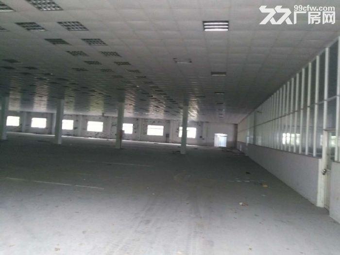 吴江开发区单层厂房1300平米,层高12米可架行车-图(1)
