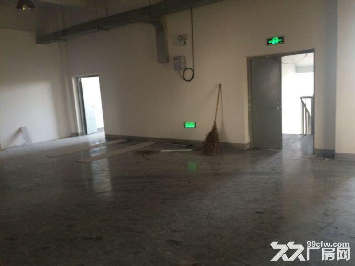 适合做办公仓储、办公、生产180平厂房仓库精装修星华产业园-图(4)