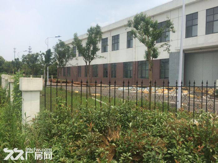适合做办公仓储、办公、生产180平厂房仓库精装修星华产业园-图(5)