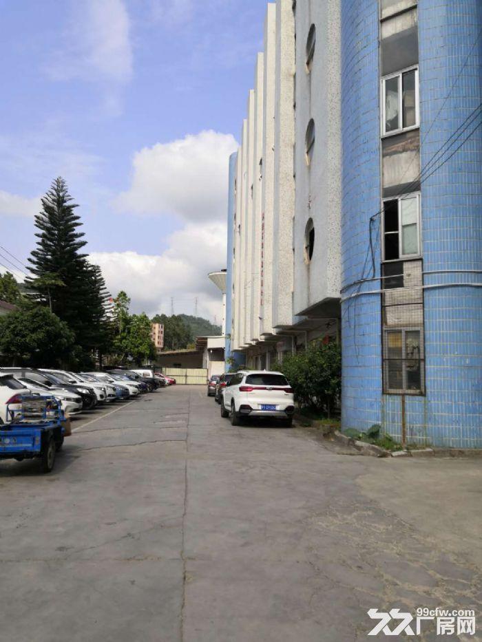 凤岗竹塘仓库包装纸箱纸盒塑胶厂房出租楼上2000平方-图(1)