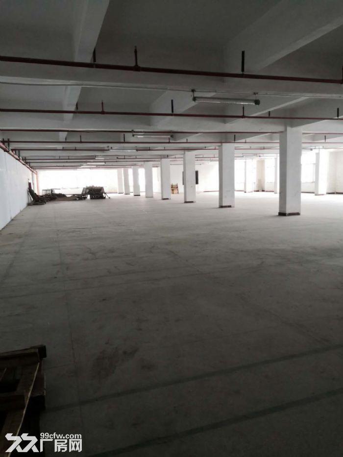 凤岗竹塘仓库包装纸箱纸盒塑胶厂房出租楼上2000平方-图(4)