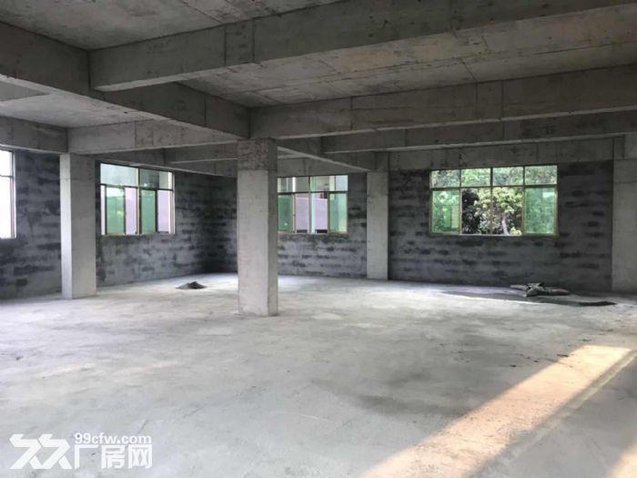 大岭山镇杨屋村独栋标准780平厂房出租-图(2)