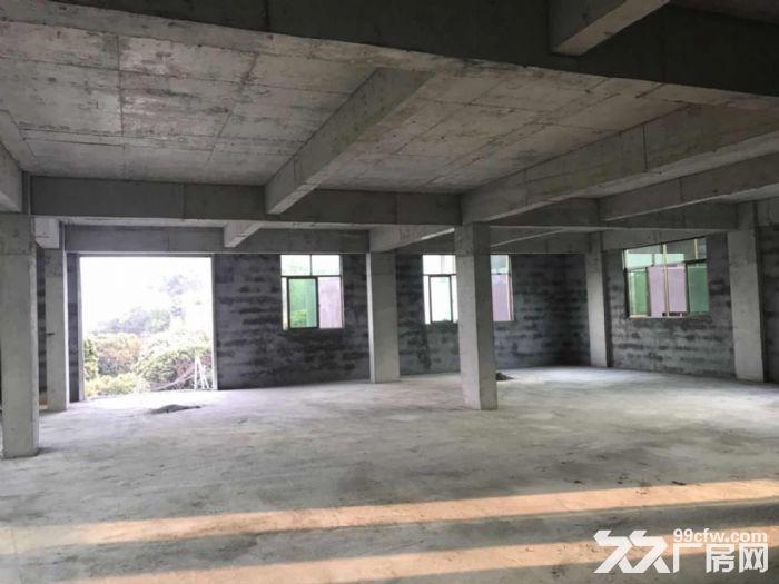 大岭山镇杨屋村独栋标准780平厂房出租-图(3)