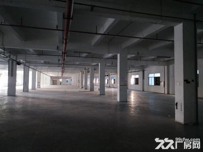 大岭山镇向东村标准厂房800平厂房出租-图(1)