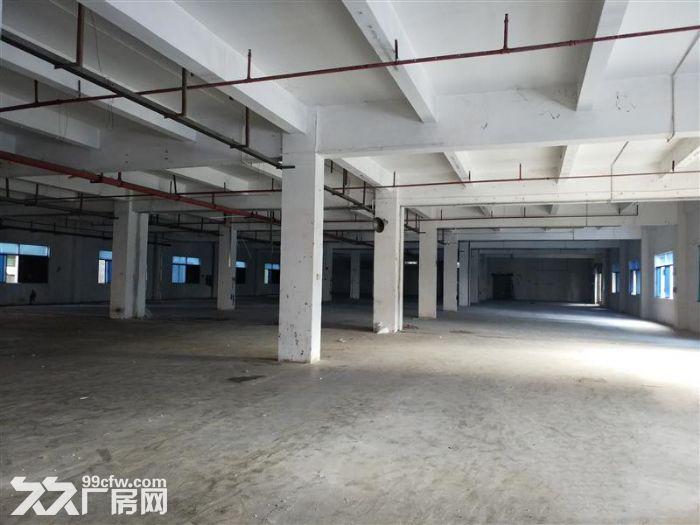 大岭山镇向东村标准厂房800平厂房出租-图(2)