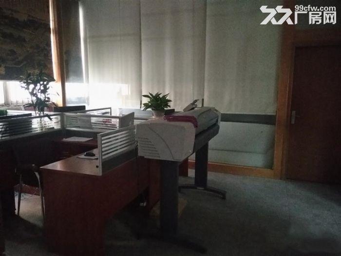 大岭山镇新塘村独院标准1500平厂房出租-图(2)