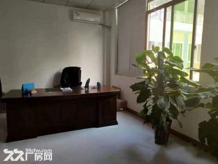 大岭山镇大塘村独院标准750平厂房出租-图(2)