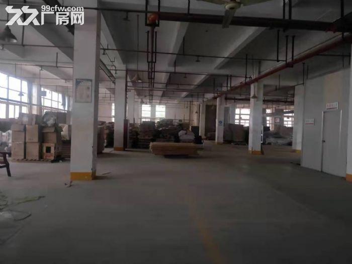 2万方厂房仓库,3000方起租,可办环评,适合家具类生产-图(2)
