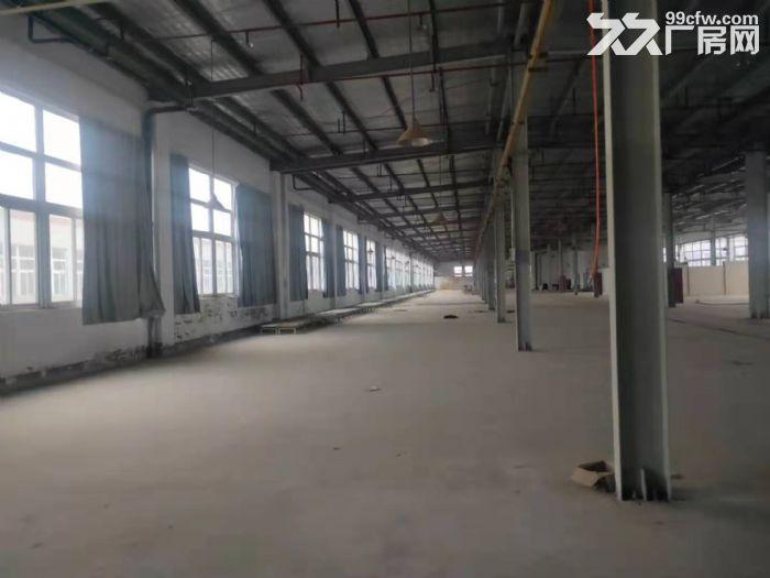 2万方厂房仓库,3000方起租,可办环评,适合家具类生产-图(1)